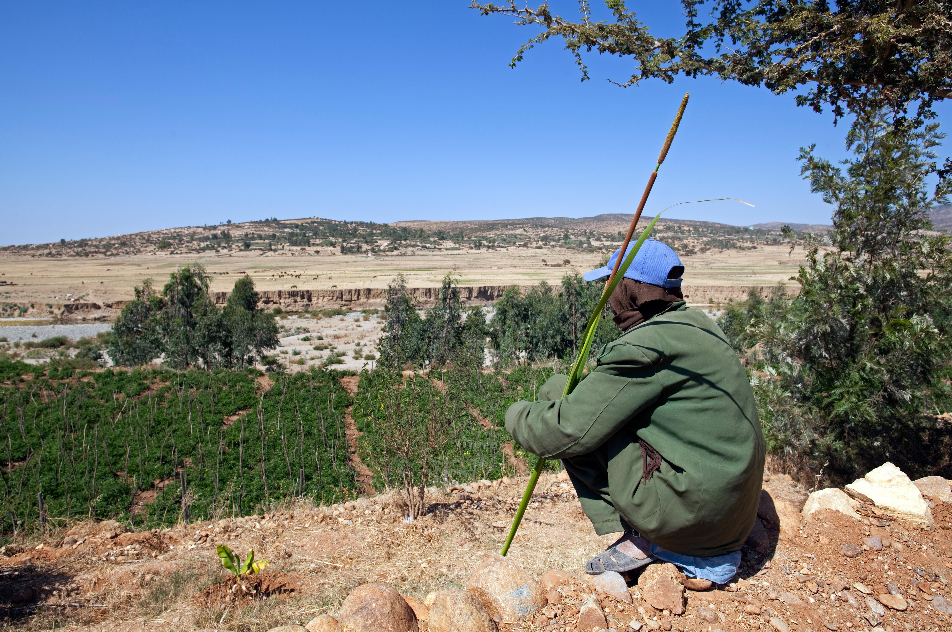 Ein Bauer blickt auf ein ausgetrocknetes Flussbett (Region Mekele in Nordäthiopien).