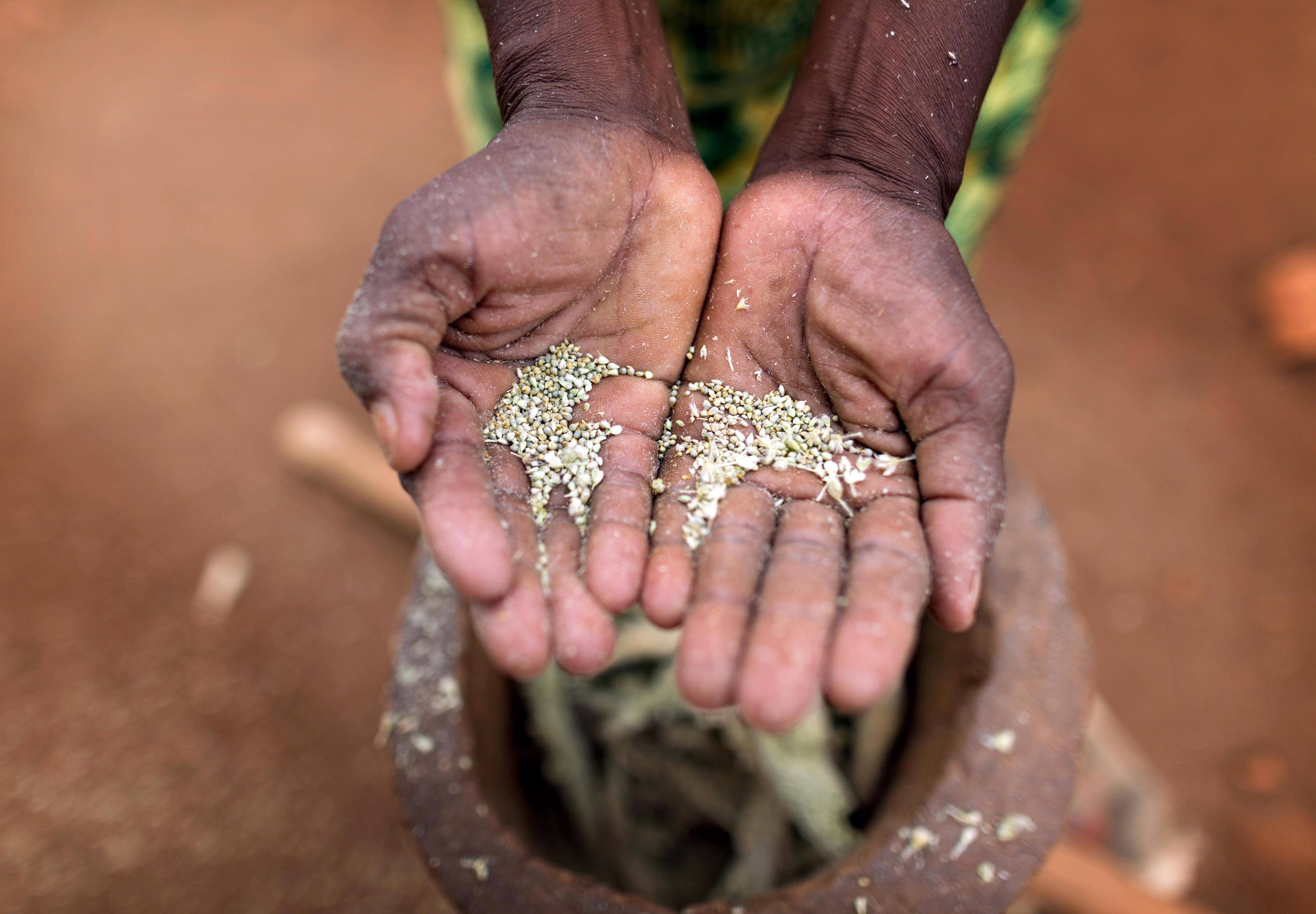 Eine Frau zeigt das Ergebnis nach dem Stampfen von Hirse auf einer kleinen Bauernfarm in Ishiara, Kenia.
