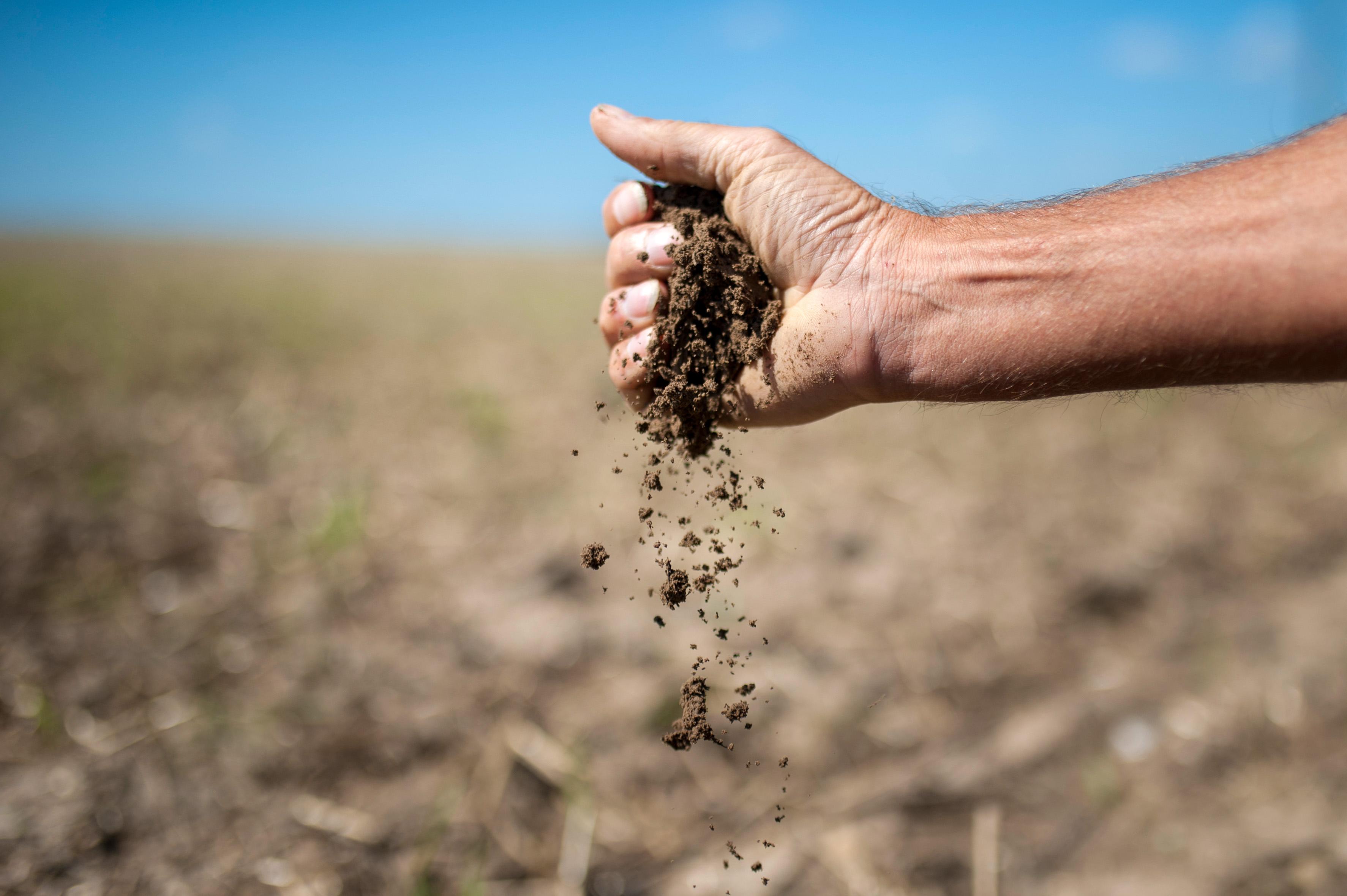 Eine Hand hält Erdboden