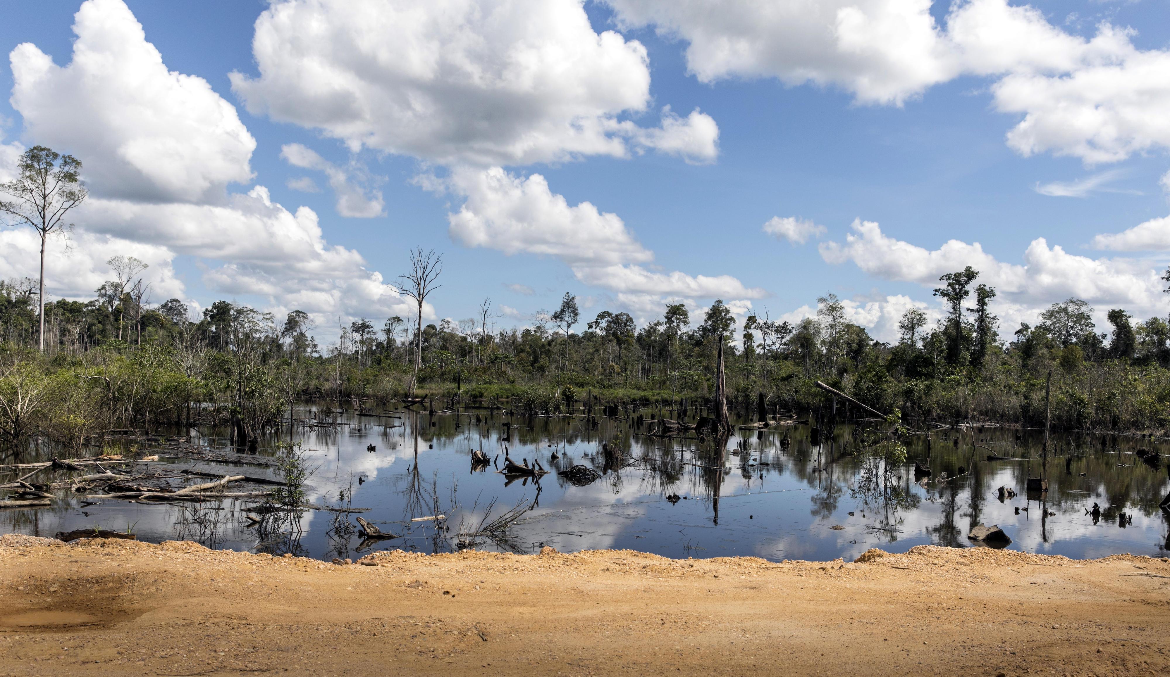 Entwaldete Landschaft bei Labanan Makarti auf Borneo