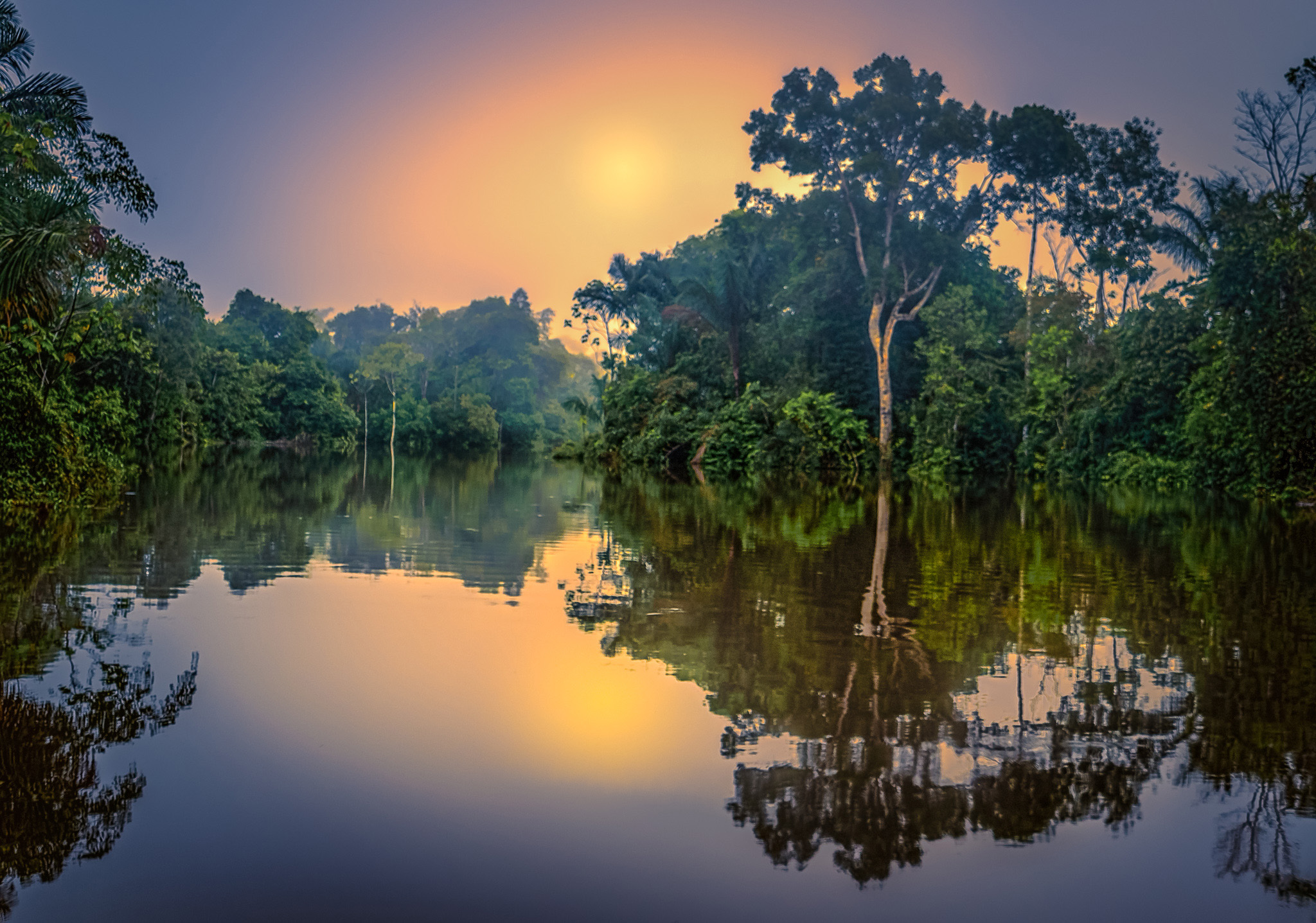 Regenwald am Amazonas in Peru