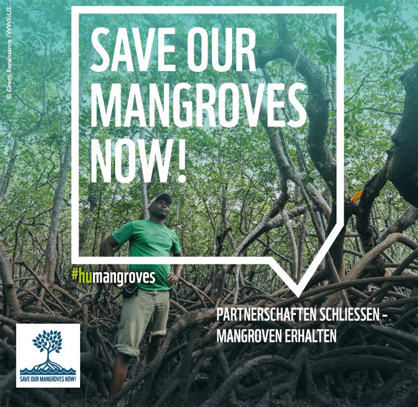 """Titelblatt """"Save Our Mangroves Now!"""""""