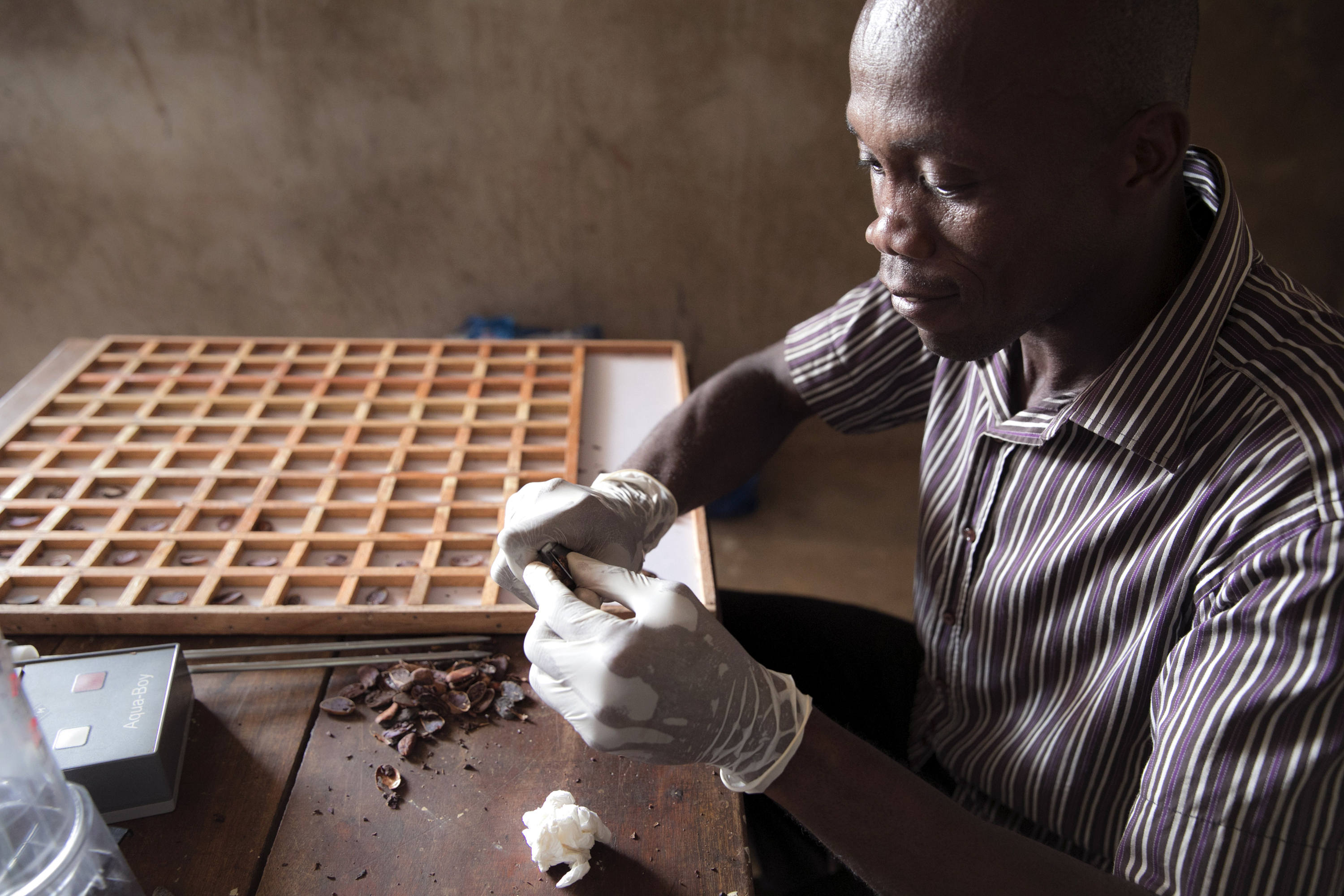 Quality control of cocoa beans at the cooperative PRO-PLANTEURS
