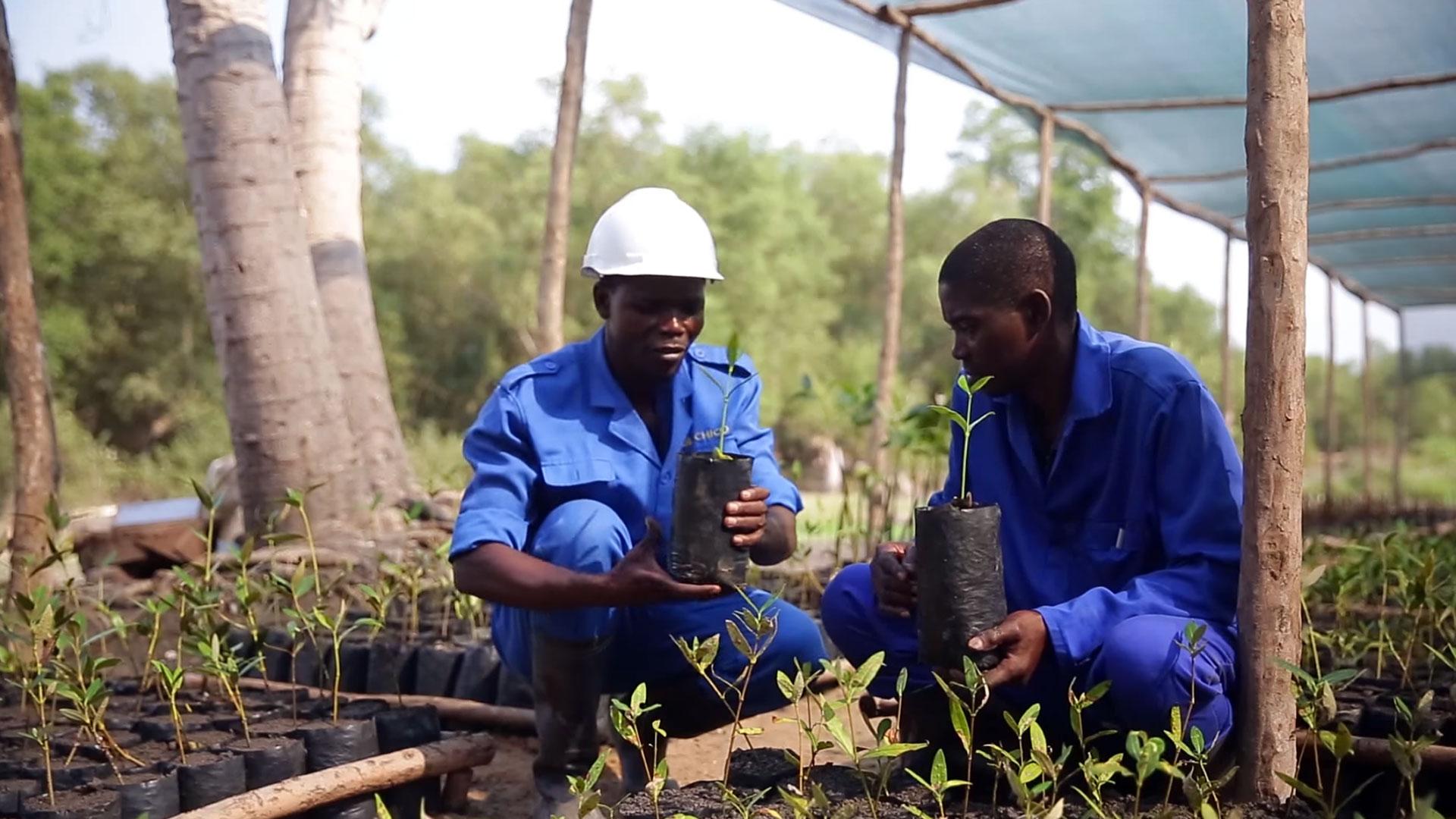 Standbild aus einem BMZ-Video über Maßnahmen zur Anpassung an den Klimawandel in Mosambik