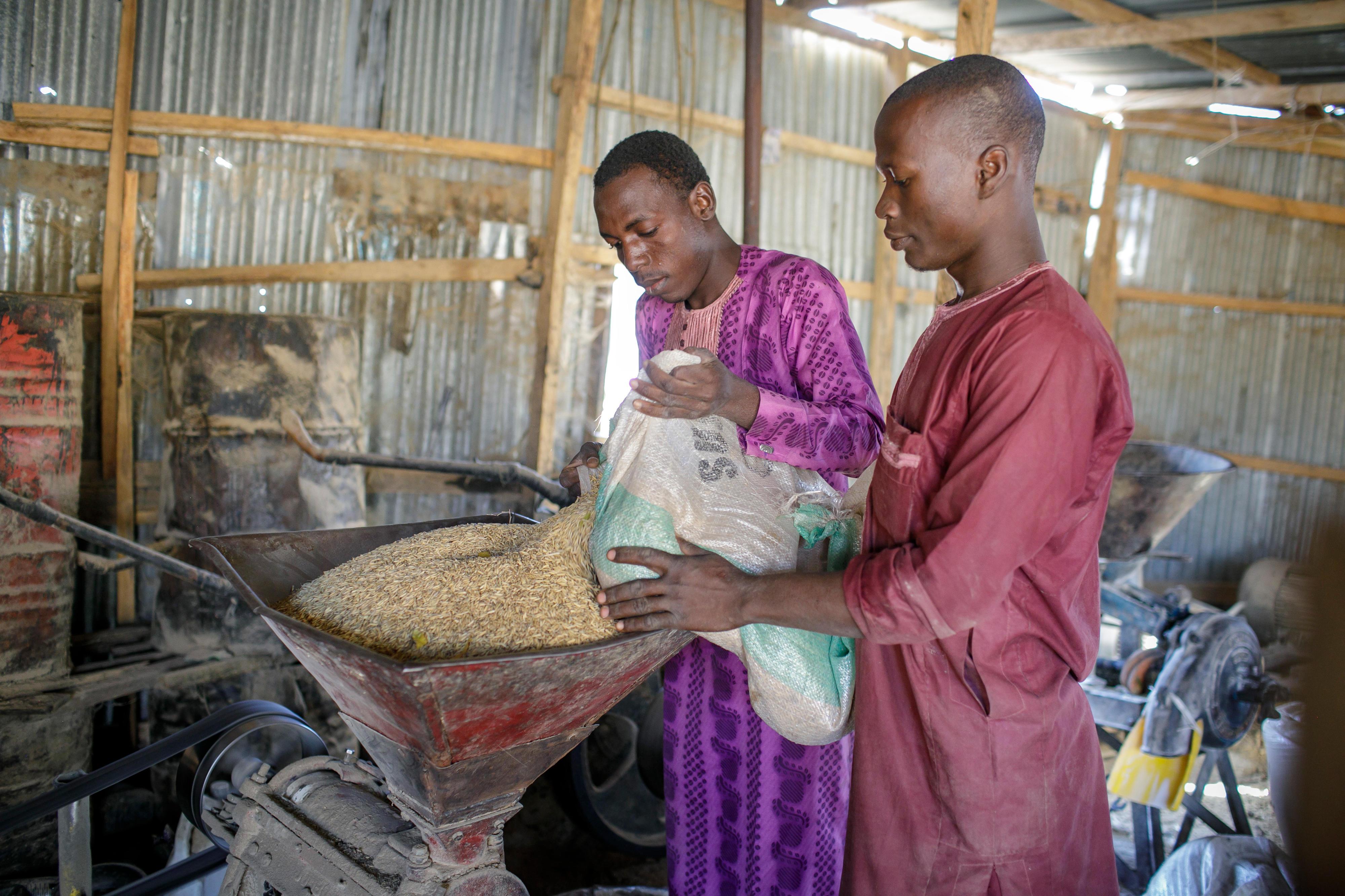 Arbeiter in einer kleinen Reismühle in Jega, Nigeria