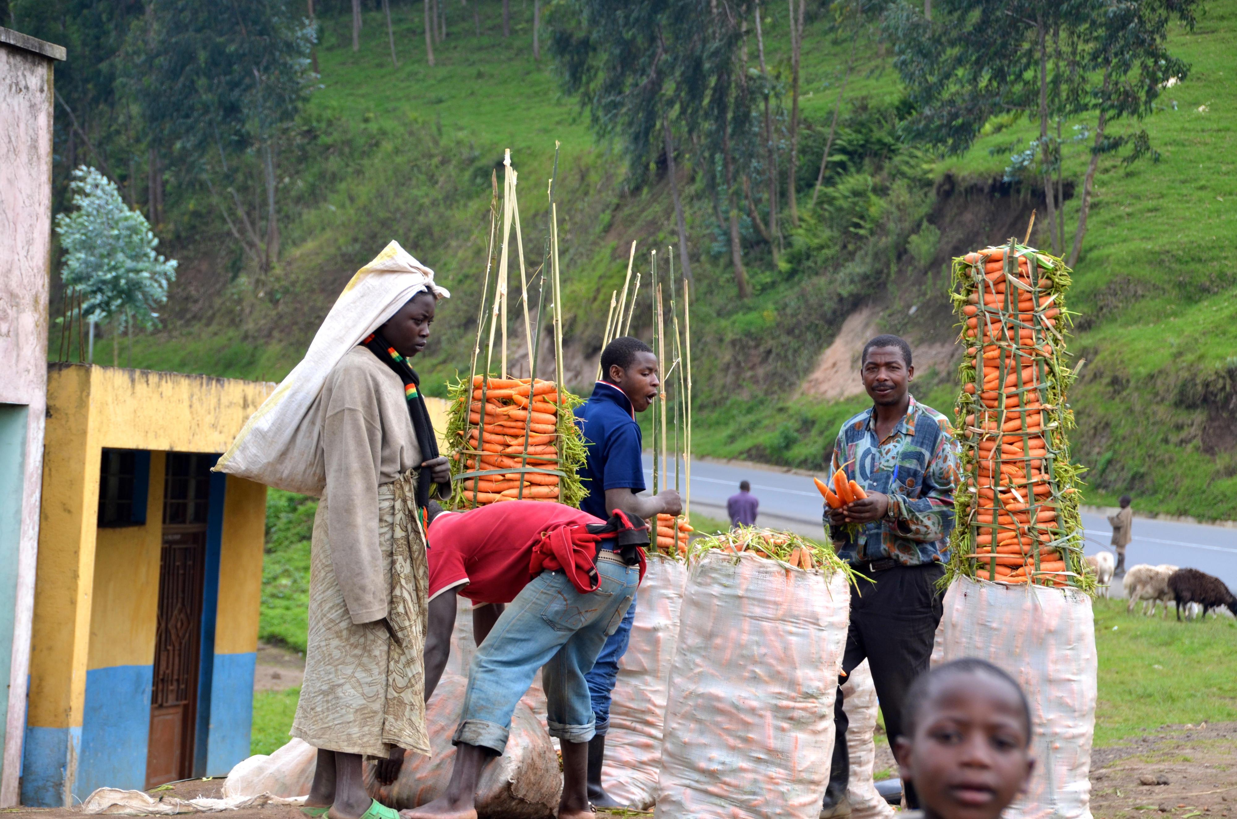 Straßenstand in Ruanda, an dem Karotten verkauft werden