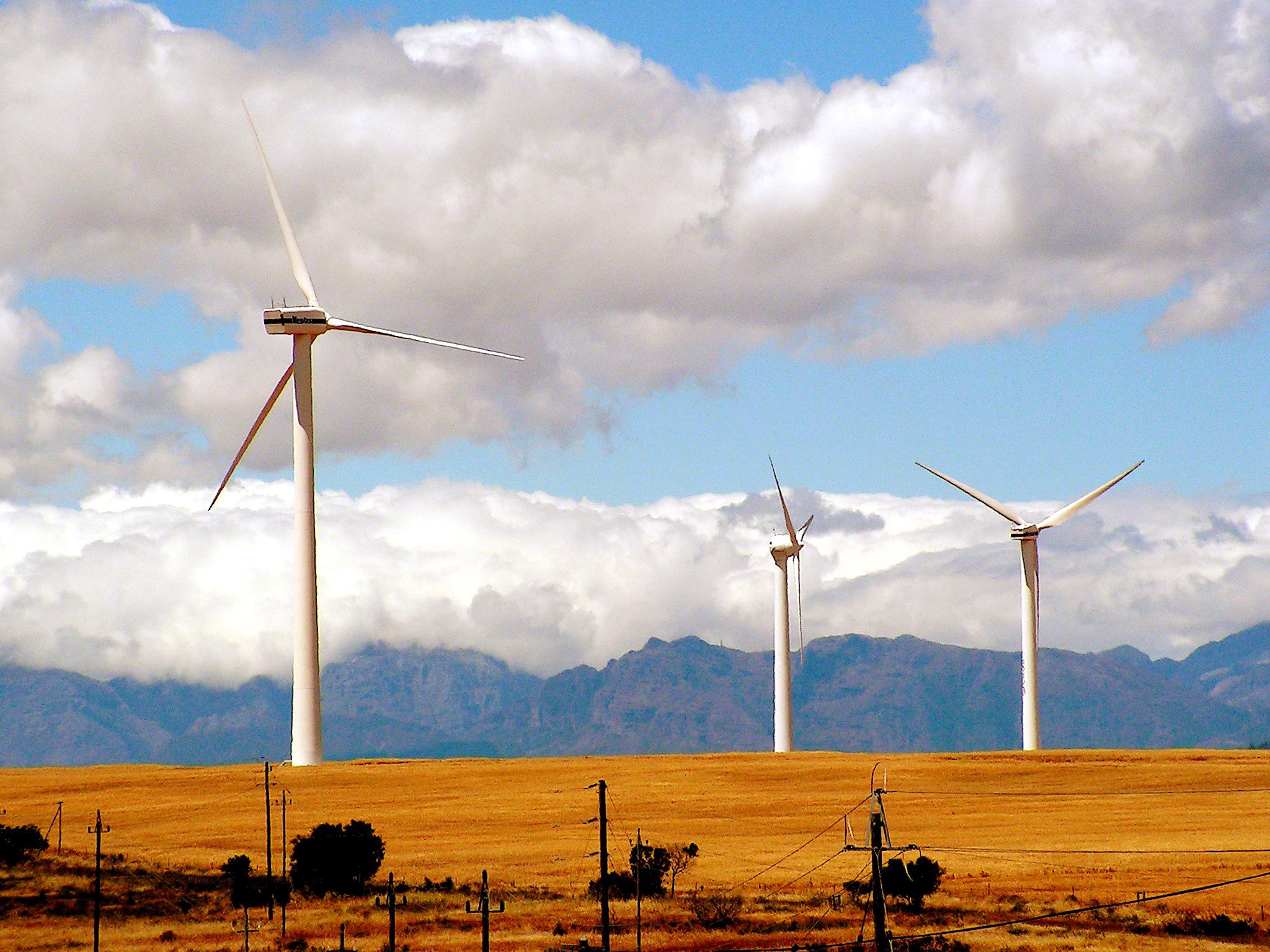 Windräder in Südafrika