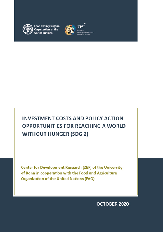 Titelblatt: Investment costs and policy action opportunities for reaching a world without hunter (SDG 2)