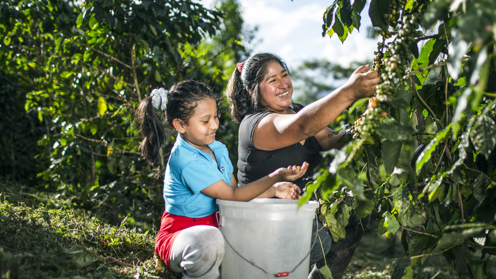 Die ehemalige Koka-Bäuerin Moly Checya aus Peru – hier mit ihrer Tochter – baut jetzt erfolgreich Kaffee an.