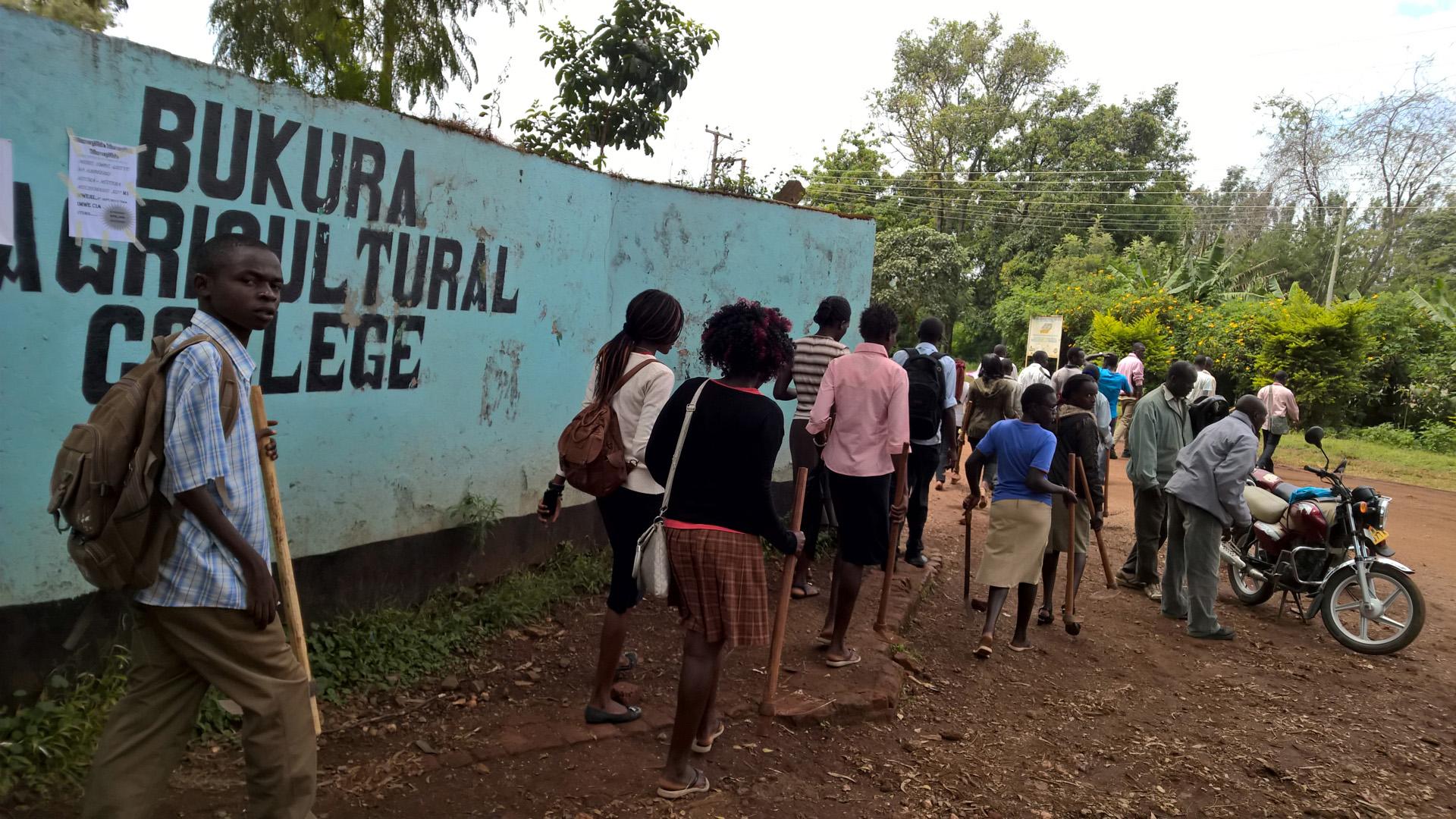 Grünes Innovationszentrum Kenia am Bukura Agricultural College
