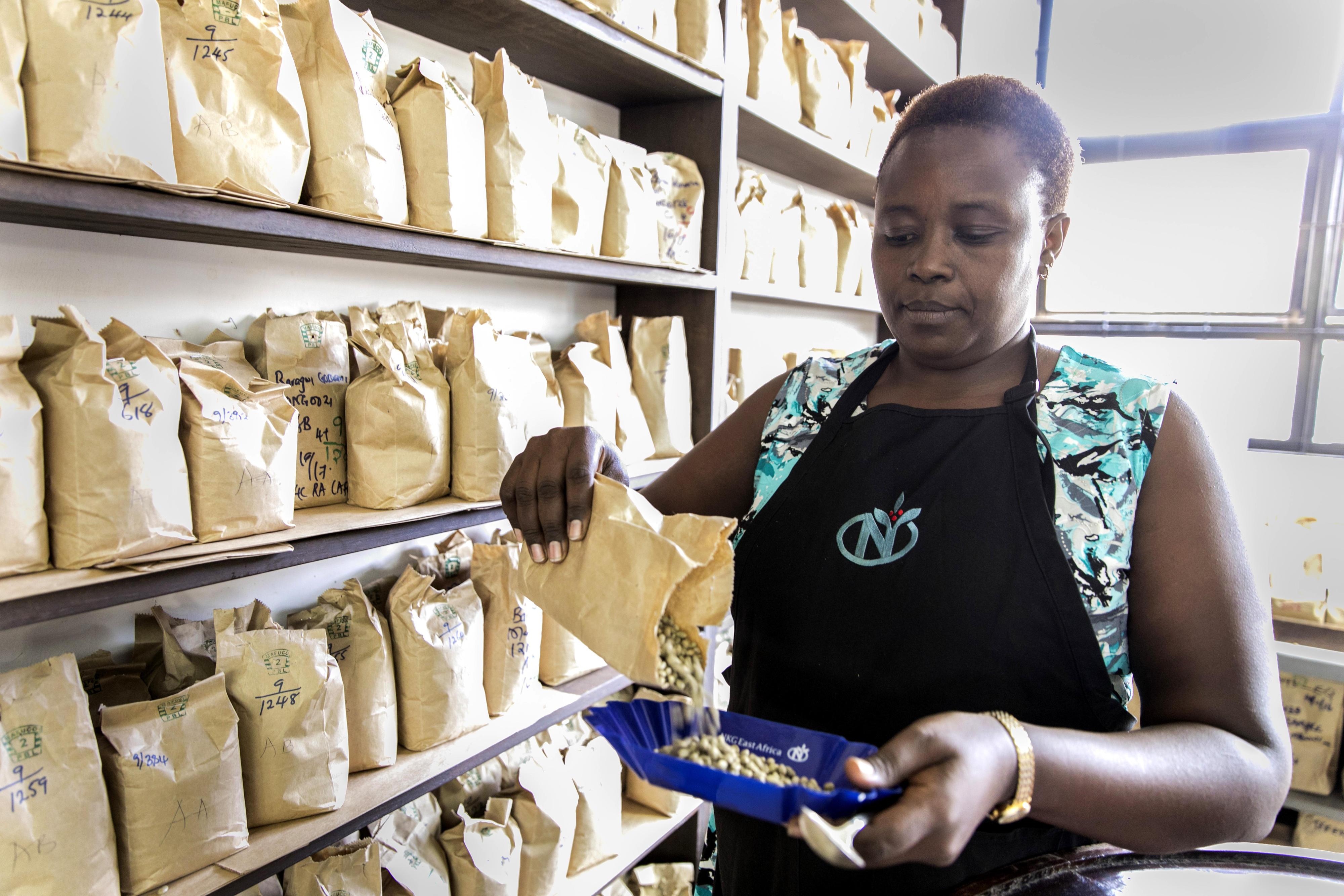 Verkosterin in einer Kaffeerösterei in Kenia