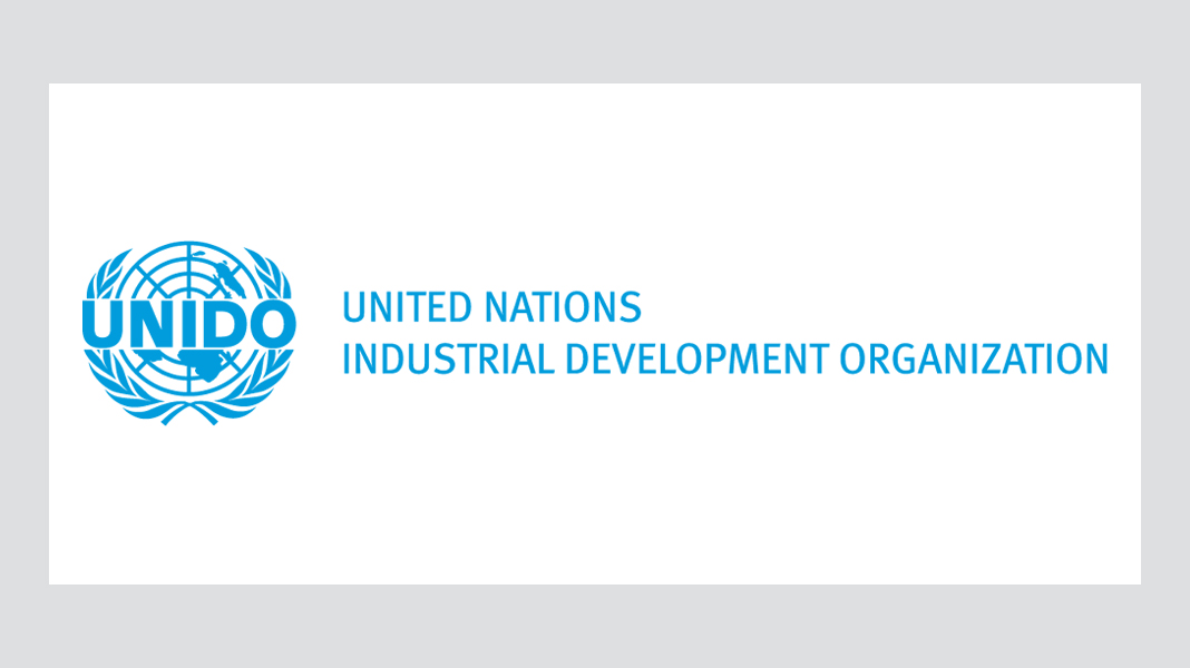 Logo: United Nations Industrial Development Organization (UNIDO)