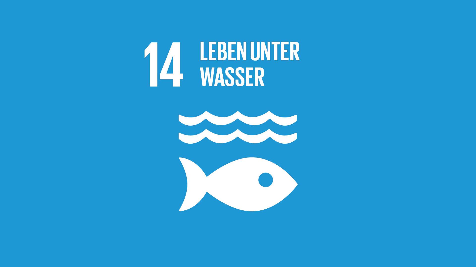 SDG 14: Leben unter Wasser