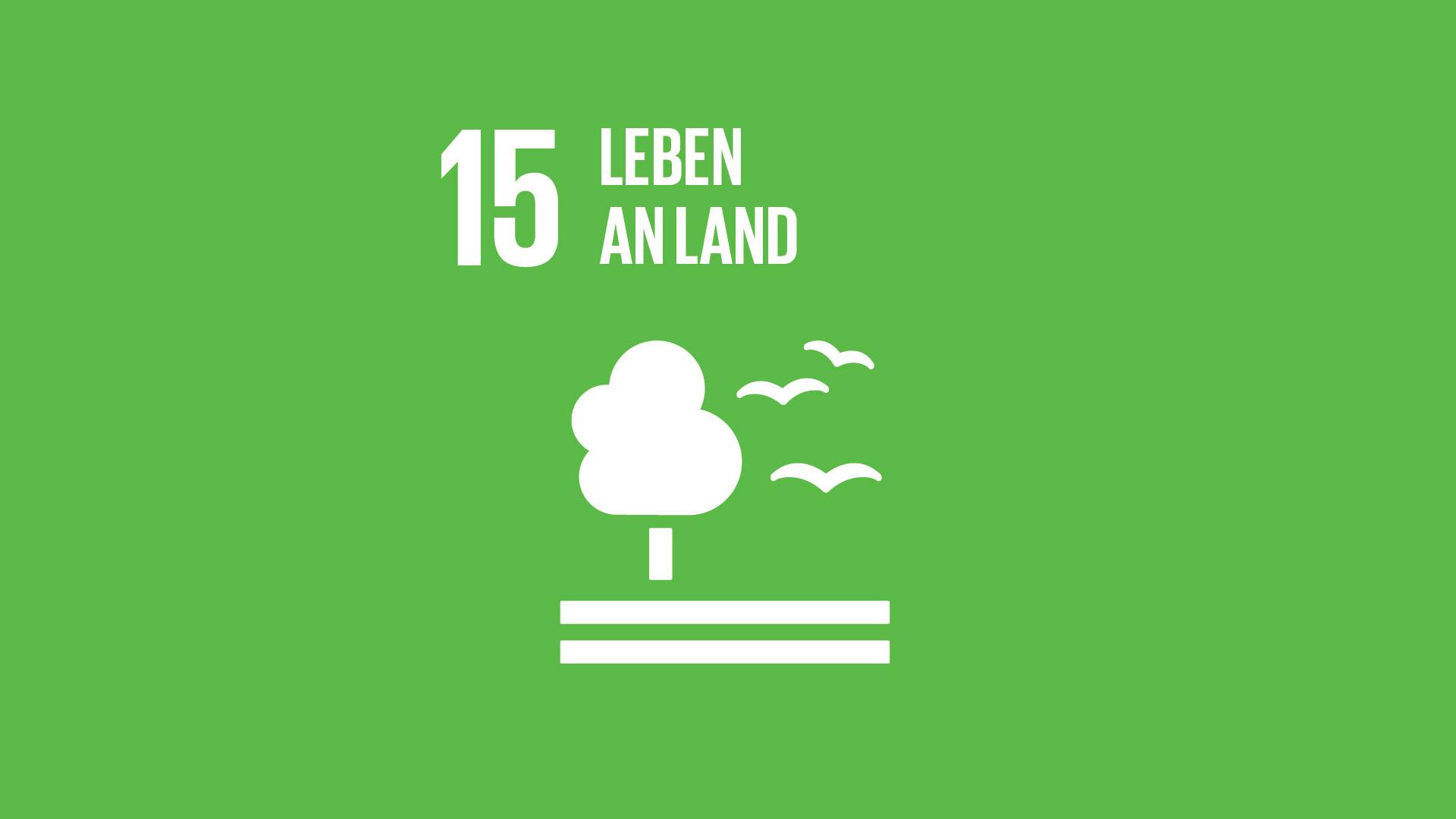 SDG 15: Leben an Land