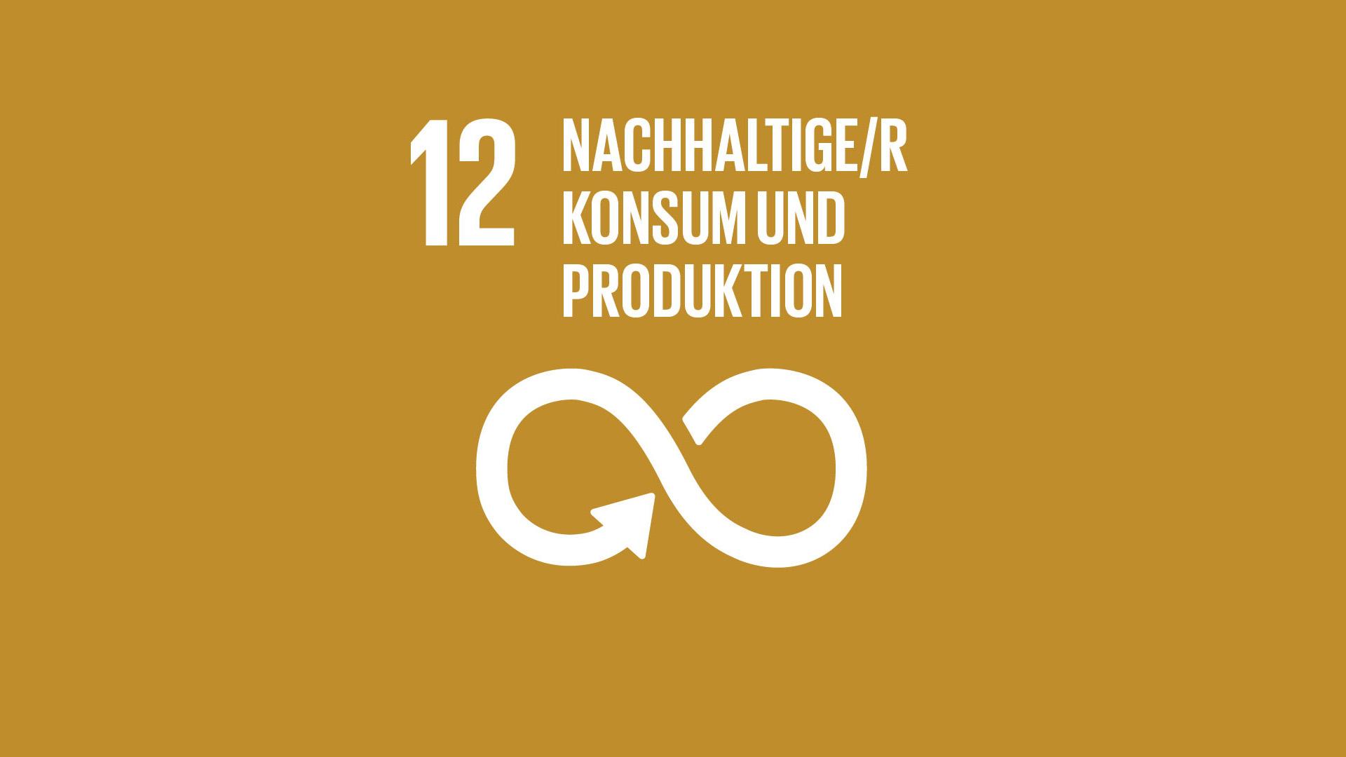 SDG 12: Nachhaltige/r Konsum und Produktion