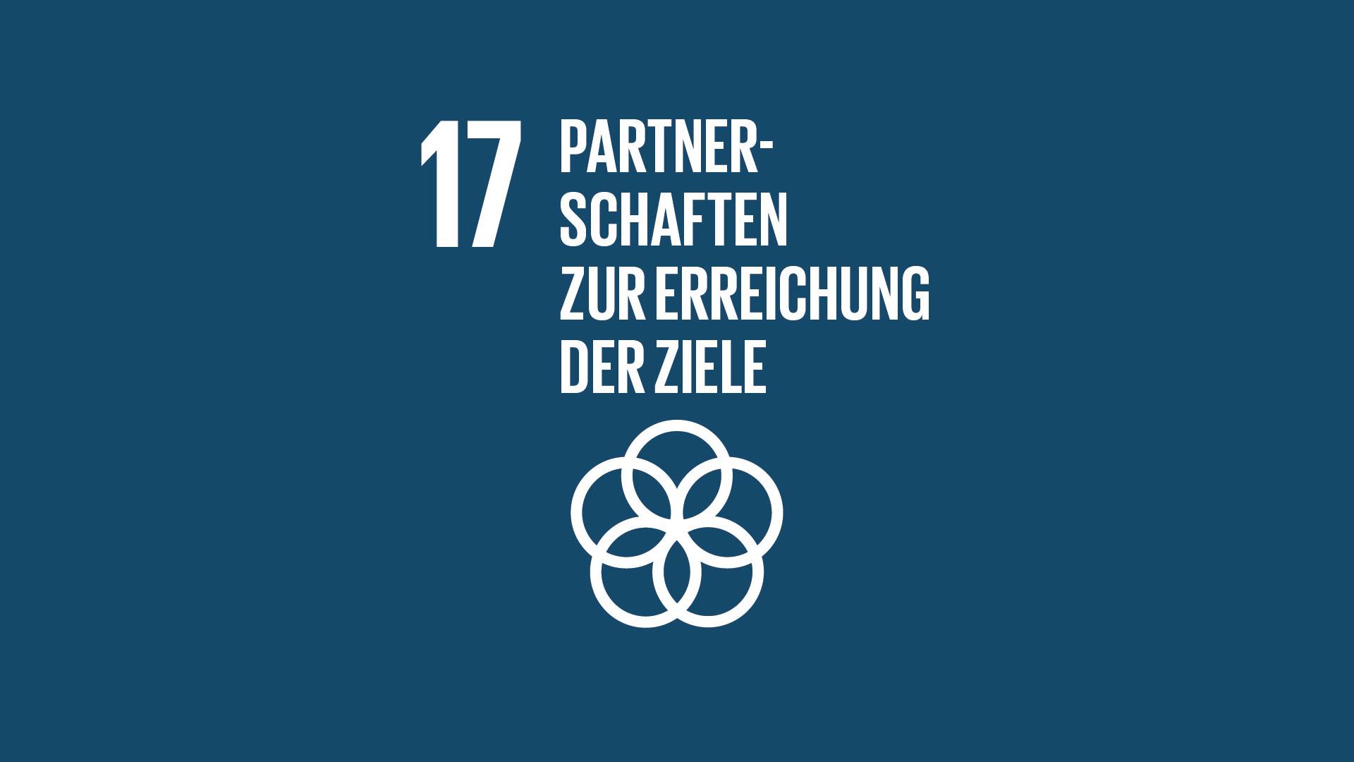 SDG 17: Partnerschaften zur Erreichung der Ziele