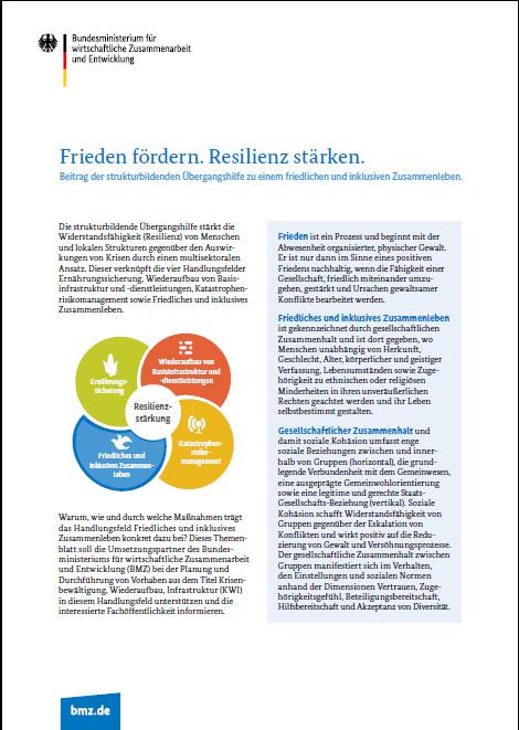 Cover: Frieden fördern, Resilienz stärken