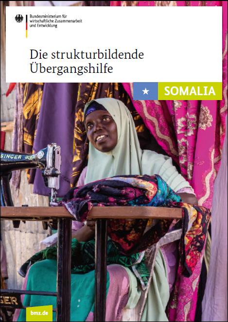Cover: Die strukturbildende Übergangshilfe in Somalia